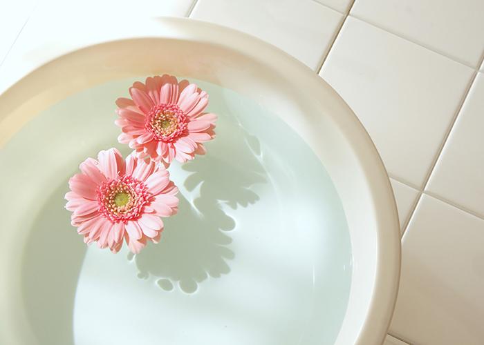 水を張った洗面器に浮かぶガーベラ